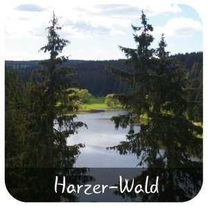 Harzer Wald See
